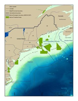 Mid Atlantic Bight / Gulf of Maine