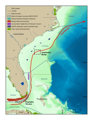 South Atlantic Bight